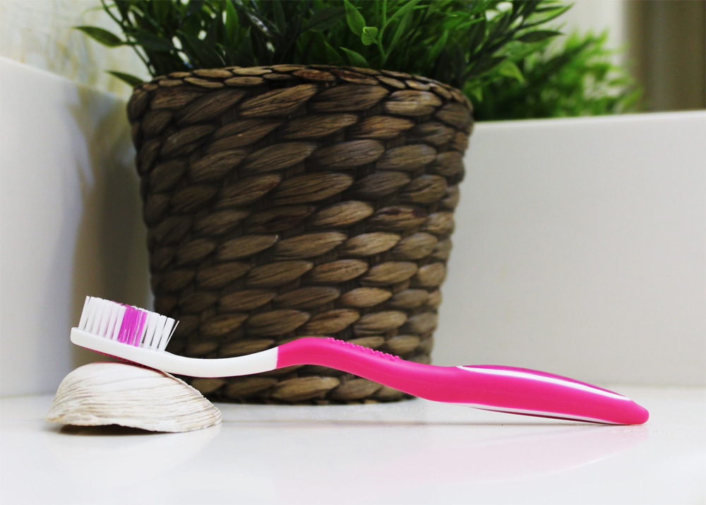 "Pink ""Selfie"" Standard manual toothbrush from Toothbrushery.com, resting on a shell behind a green plant in a brown basket pot on a white counter."